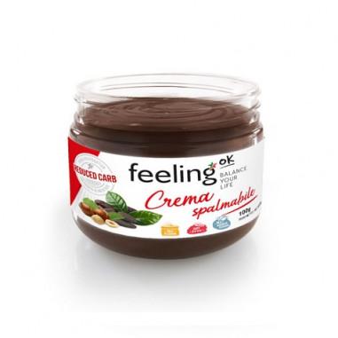 Crème au Chocolat CiaoCarb Protochoc Phase 1 Chocolat 100 g