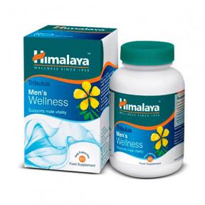 Tribulus Men's Wellness Himalaia 60 cápsulas
