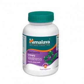 Boerhaavia urinary wellness Himalaya 60 tablets